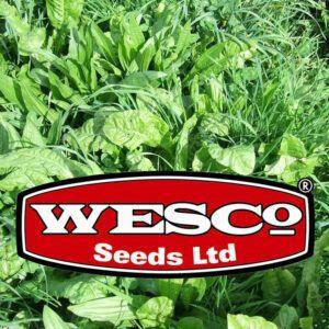 Classic Wesco Seed Mixes