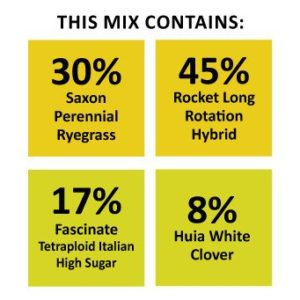 Pasture Recovery Mix is a type of seed mixture which have saxon perennial ryegrass base providing long term pasture