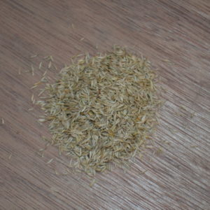 Buy grass seed online at Wesco Seeds which is located in the South Island in New Zealnd