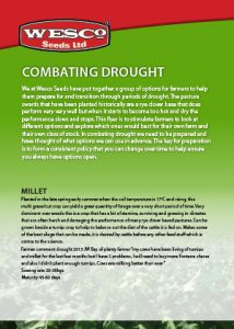 combating-drought