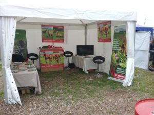 Buy bulk pasture seed online at Wesco Seeds Ltd.