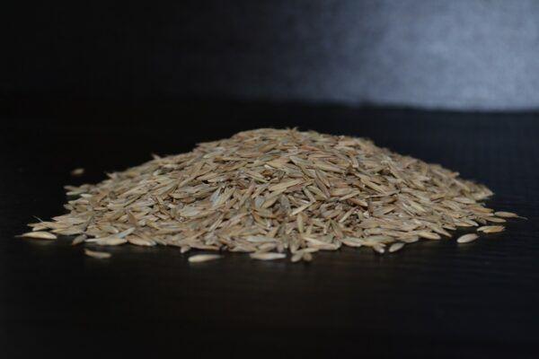 Wesco Seeds sell bulk organic grass seed for organic farmers