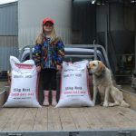 Buy quality grass seed online at Wesco Seeds in New Zealand