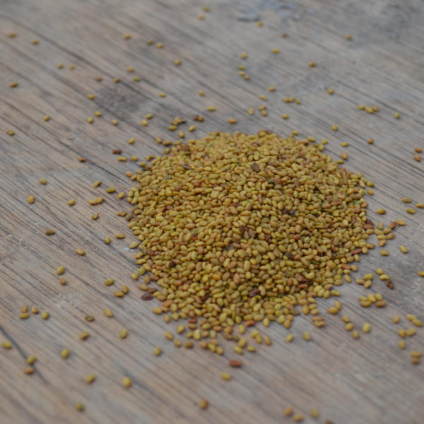 Wesco Seeds Sell grass seed types online such as lawn seed pasture seed and kale seed