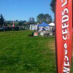 Wesco Seeds Ltd sell Grass seed bulk online in New Zealand