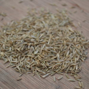 Wesco Seeds is located in the South Island in New Zealand and sells Italian Ryegrass seed and other grass seed types bulk online