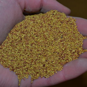 Wesco Seeds Sell clover seed online
