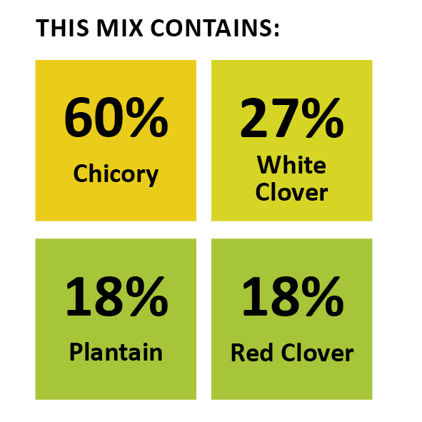 Wesco seeds sell grass seed mixtures online this grass seed mixture contains clover seed