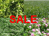 Special Mixes going cheap on Wesco Seeds Website